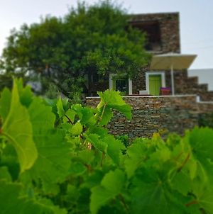 Cycladic Vineyard House photos Exterior