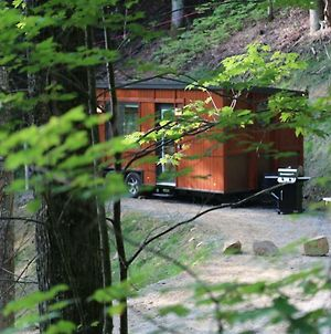 Little Red Is An Adorable Romantic Tiny Home W/Firepit photos Exterior