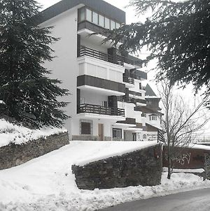 300 Meters From The Ski Lifts photos Exterior
