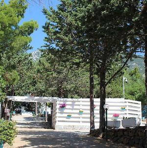 Camping Car Palmasera photos Exterior