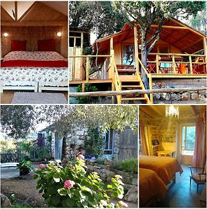 Stazzu La Capretta Farm Camping & Guest Rooms photos Exterior