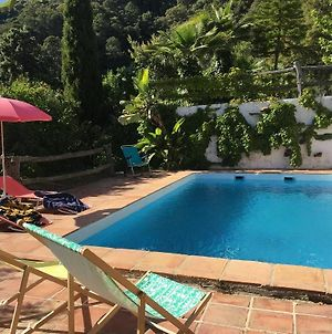 Villa With 4 Bedrooms In Genalguacil, With Wonderful Mountain View, Private Pool And Furnished Terra photos Exterior