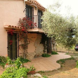 House With 4 Bedrooms In Ampolla, Tarragone, With Enclosed Garden - 1 Km From The Beach photos Exterior