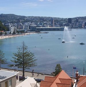 Oriental Bay At Its Best photos Exterior