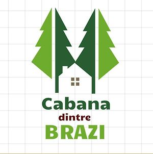Cabana Dintre Brazi photos Exterior