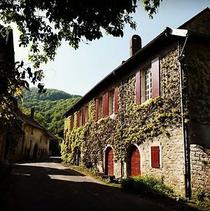 Casa Antolia - Charming Winery House From 1765 In Nature Reserve photos Exterior