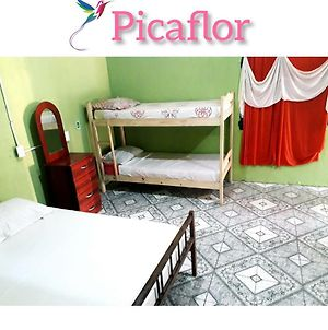 Picaflor Backpackers photos Exterior