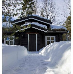 Hemsedal Mountain Cottage photos Exterior