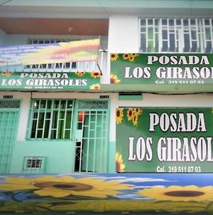 Posada Los Girasoles photos Exterior