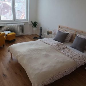 Luxurious Apartment 3 Min Walk To City Center - Snack, Beverages Included In Price photos Exterior