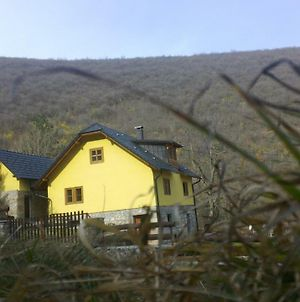 Guest House - Stari Javor B&B photos Exterior