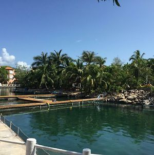 Studio 102 Puerto Aventuras Private Complex With Swimming Pool photos Exterior