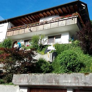 Lovely Apartment In Baden-Wurttemberg Germany Near Ski Area photos Exterior