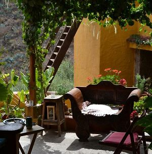 Traditional Canarian Country House B&B photos Exterior