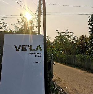 Vela Sustainable Living photos Exterior