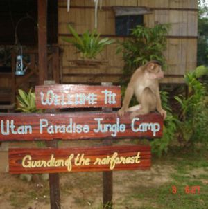 Utan Paradise Jungle Camp photos Exterior