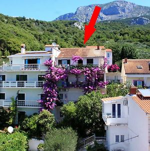 Apartments And Rooms With Parking Space Podgora 6790 photos Exterior