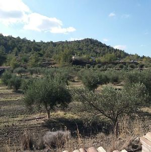 Forest Long Stay House Sia Nicosia 24 Km From Larnaca photos Exterior