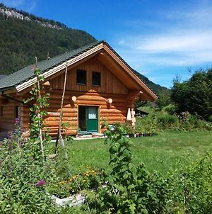 Durrenstein Living - Natural Log House - Naturstammhaus photos Exterior