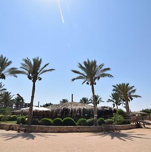 Sharm El Naga Resort And Diving Center photos Exterior