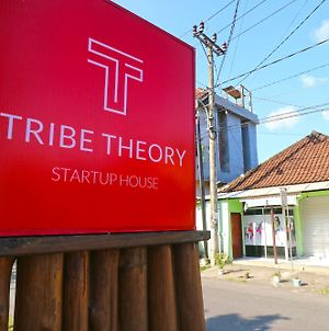 Tribe Theory - Startup House photos Exterior