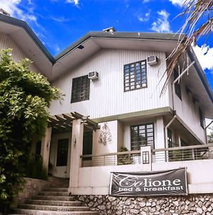 Colione Bed And Breakfast photos Exterior