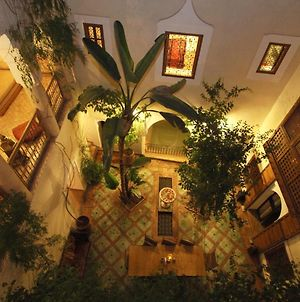 Riad El Youssoufi photos Exterior