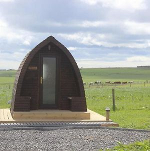 Hillside Camping Pods photos Exterior
