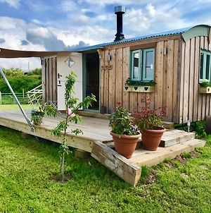 Willowbank Shepherds Hut photos Exterior