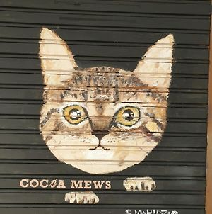 Cocoa Mews Cafe And Homestay photos Exterior
