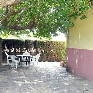 House With 3 Bedrooms In Peniscola, With Pool Access, Furnished Garden photos Exterior