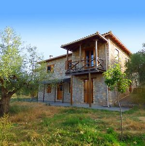 Luxurious Mansion In Olive Grove & View To Mystras photos Exterior