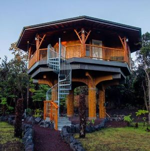 Big Island Bamboo Treehouse photos Exterior