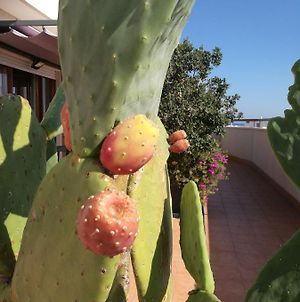 Isolaazzurra photos Exterior