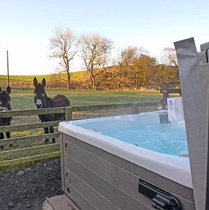 3 Bed Lodge W Private Hot Tub On Animal Haven Farm photos Exterior