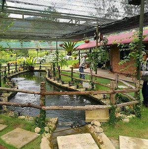 Lovely Homestay Janda Baik photos Exterior