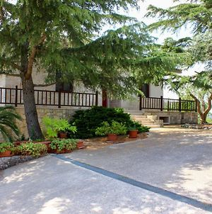 Large Villa With Pool Martina Franca Puglia photos Exterior