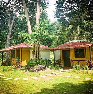 Mount Avangan Eco Adventure Park photos Exterior