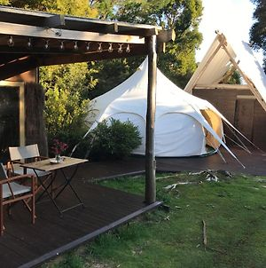 Wild Forest Estate Glamping photos Exterior