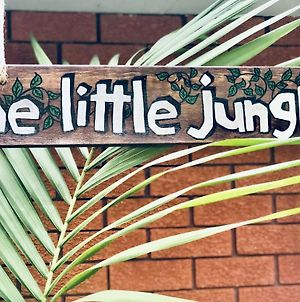 The Little Jungle Studio photos Exterior