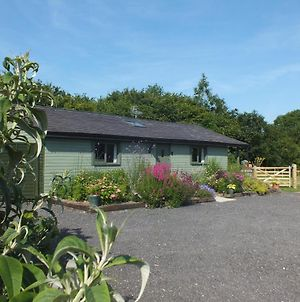 The Potting Shed And The Garden Shed Self Catering photos Exterior
