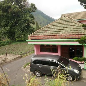 Homestay Elga photos Exterior