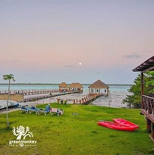 Green Monkey Hostel Bacalar photos Exterior