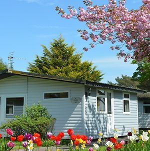 Coniston Lodge + Hot Tub @ Solway Holiday Village photos Exterior