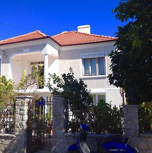 Summer Houses Gardenby The Sea Chernomorets photos Exterior