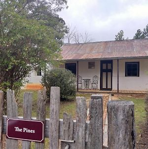 Pines Cottage photos Exterior