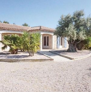 Beautiful Home In Ferrals Les Corbieres W/ Outdoor Swimming Pool, Wifi And Outdoor Swimming Pool photos Exterior
