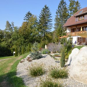 Apartment With Balcony, Garden Access And Sauna In The Black Forest photos Exterior