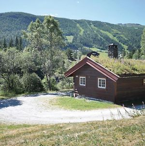 Holiday Home Hemsedal Holde Hemsedal photos Exterior