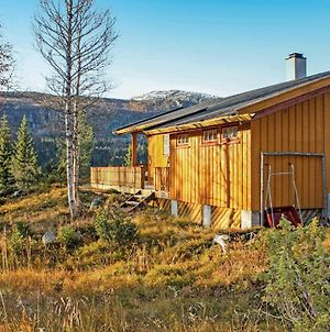 Holiday Home Eggedal 36 photos Exterior